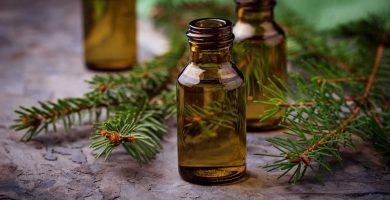 Propiedades beneficios y usos del aceite del árbol de té 2